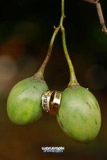 Tea Farm kenyan wedding by waruisapix-11