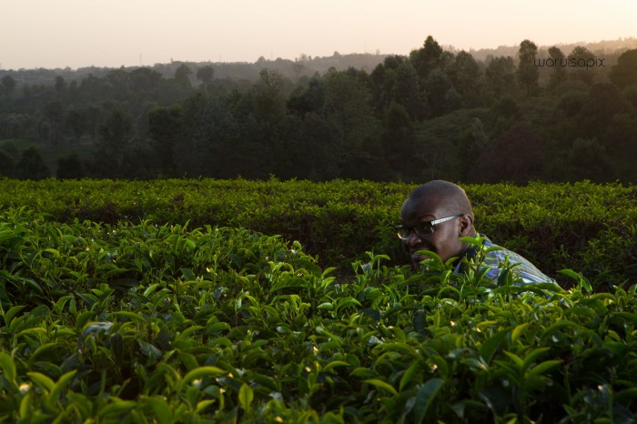 top kenyan wedding and engagement photographer random shoot in the cofffee plantation-17
