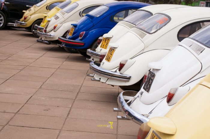 a vintage kenyan wedding with a random vw beetle and kombi convoy by kenya's top wedding photographer waruisapix-50